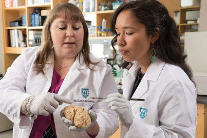 Researchers holding a brain