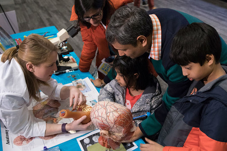 Neuroscience outreach fair