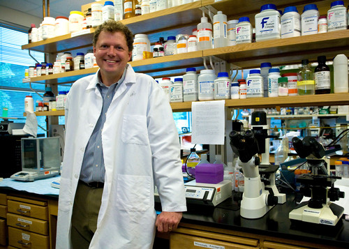 Kerry Ressler, MD, PhD
