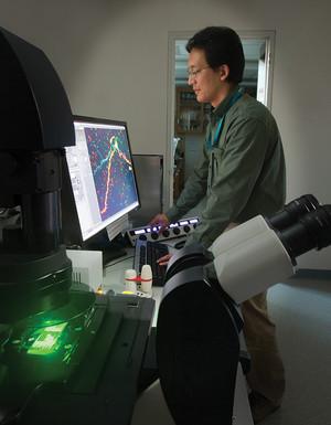 Jason Han, PhD