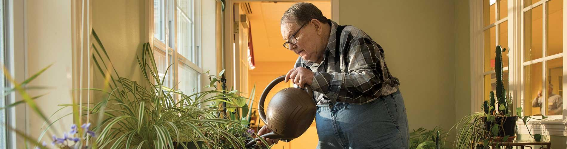 Old man waters plants with watering can