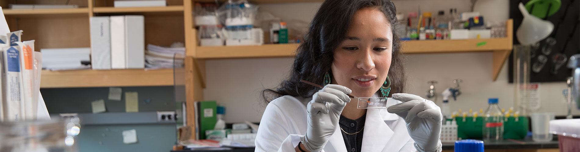 Neuroscientist working in lab