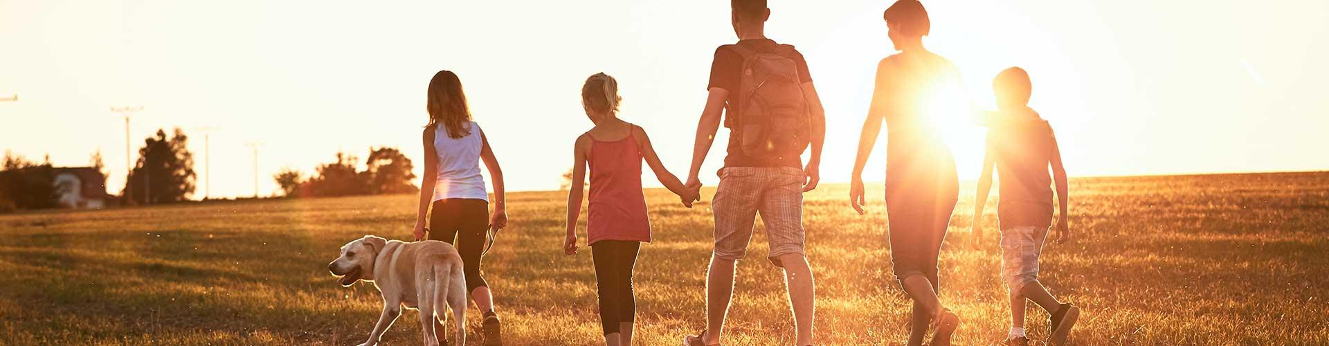 Family walks in field at sunset