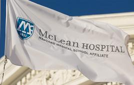 McLean flag